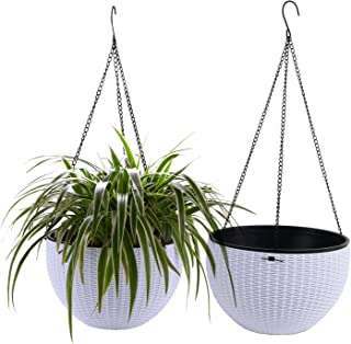 Best hanging basket for plants Reviews