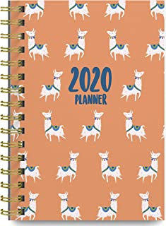 Best mead 2019 weekly & monthly planner Reviews