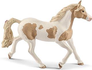 Mustang Horse Rearing