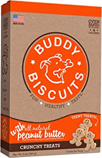 Cloud Star Bitty Buddy Biscuits