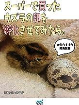 表紙: スーパーで買ったウズラの卵を孵化させてみたら。~ひなのすけの成長記録~ | 三枝 りいのすけ