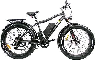 Fat Tire Electric Bike SAFECASTLE BREEZE PRO 750W Beach Snow Bicycle 26
