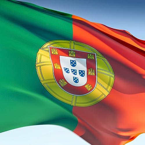 Verbos Portuguese Pro