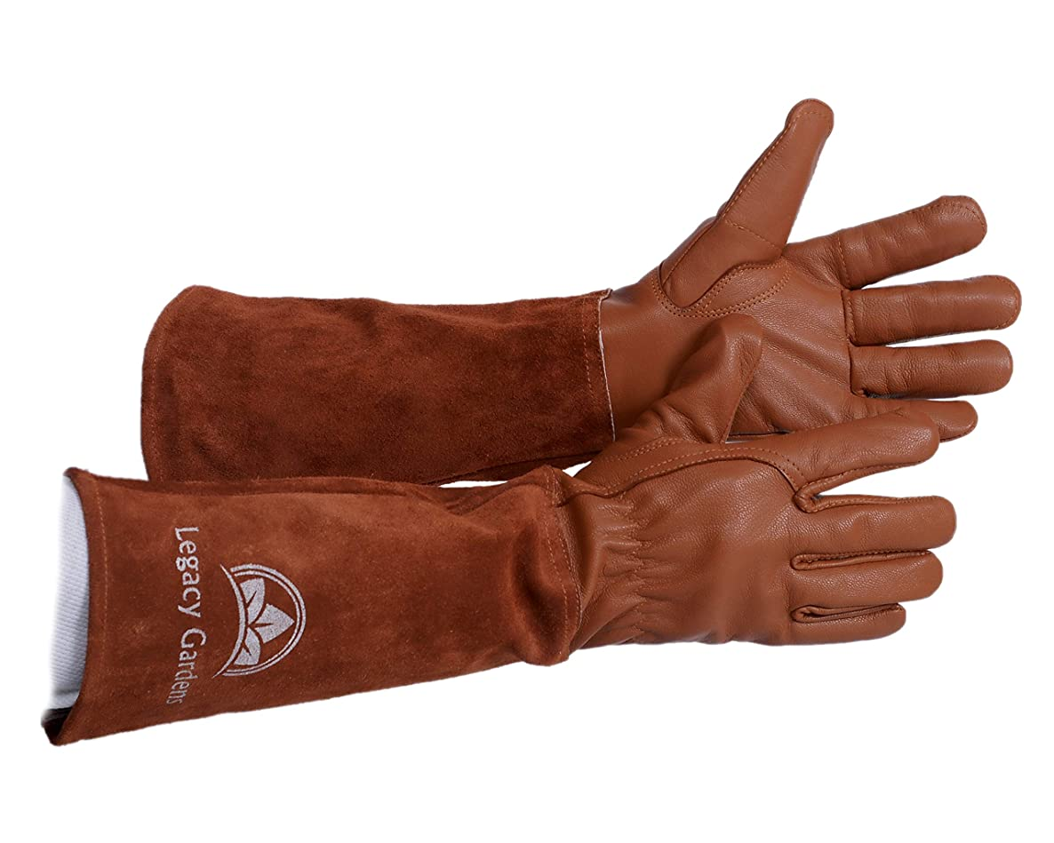 Legacy Gardens Protective Gloves for Women & Men   Thorn and Cut Proof Garden Work Gloves Suitable for Thorny Bushes Cacti Rose Pruning- XL Brown
