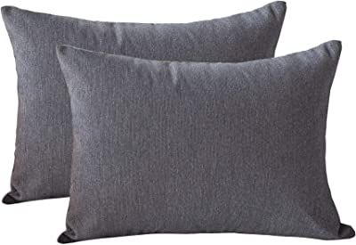 Homy Cozy 95247-SILVER-1420-2PK Accent Pillow, Silver