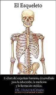 El esqueleto humano, e-chart: E-chart del esqueleto humano, desarrollado para la educación, la medicina y la formación méd...