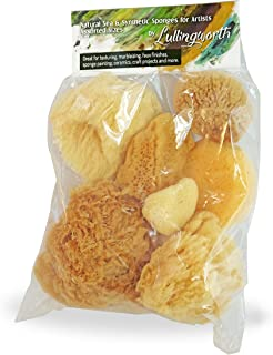 Natural Sea & Synthetic Sponges - Assorted Sizes 7pc Value Pack for Crafts & Artists: Great for Painting, Creative Hobbies, Art, Effects, Ceramics, Clay, Pottery by Lullingworth