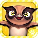 Virtual Pet Owl