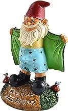 Noa Store Perverted Garden Gnome Figure: Gnome Flashes Greeting