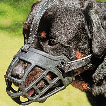 Boxer Leather Muzzle