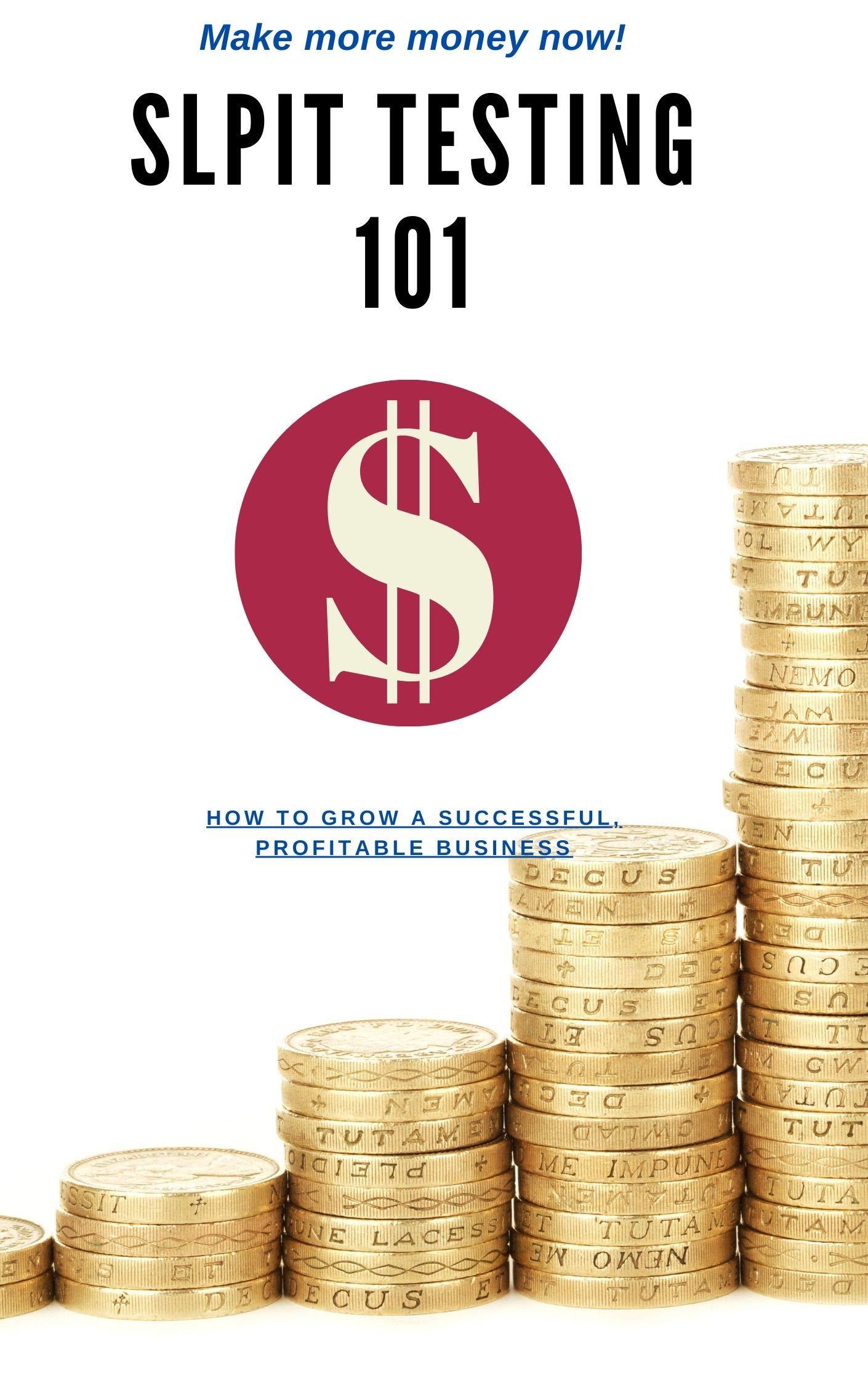 Slpit Testing 101 | Split Testing Guide (Business Book 2)