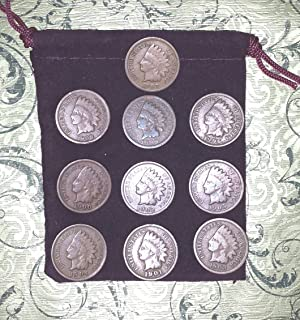 10 different Indian Head Cents Pennies in Gift Bag - 10 Little Indians