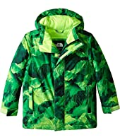 The North Face Kids - Darten Insulated Jacket (Little Kids/Big Kids)
