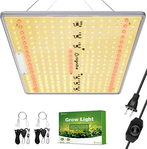high quality Grow Light, Briignite LED Grow Light, BRQ 600W wholesale LED Grow Light, Full Spectrum LED Grow Light with Samsung LM281B LEDs, 2x2ft Coverage Plant Grow lowest Light, Dimmable Grow Light for Indoor Plants, Seedling online