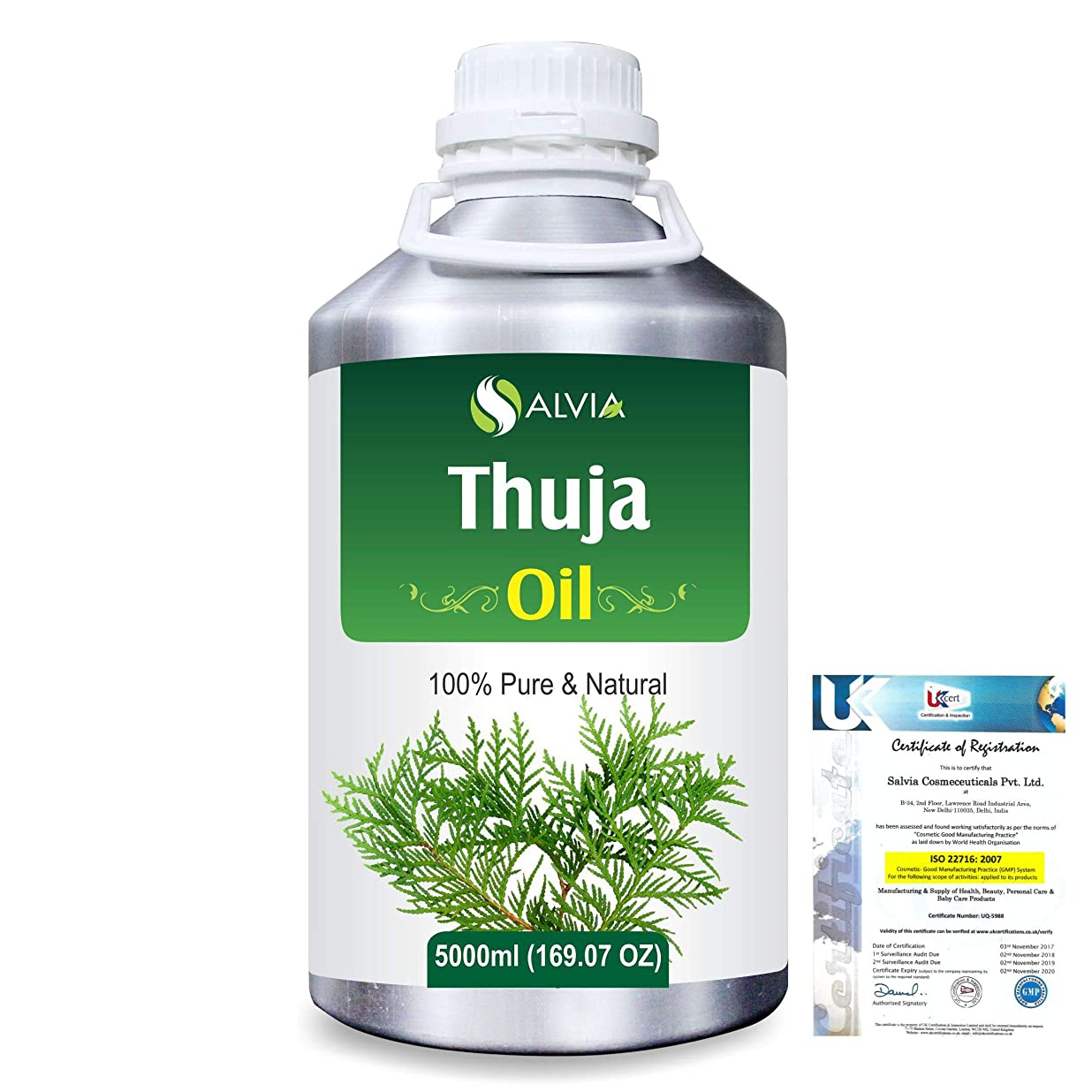 ほとんどの場合十分ルーチンThuja (Thuja Orientali) 100% Pure Natural Essential Oil 5000ml/169 fl.oz.