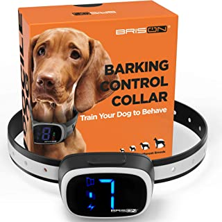 Best do anti bark collars for dogs work Reviews