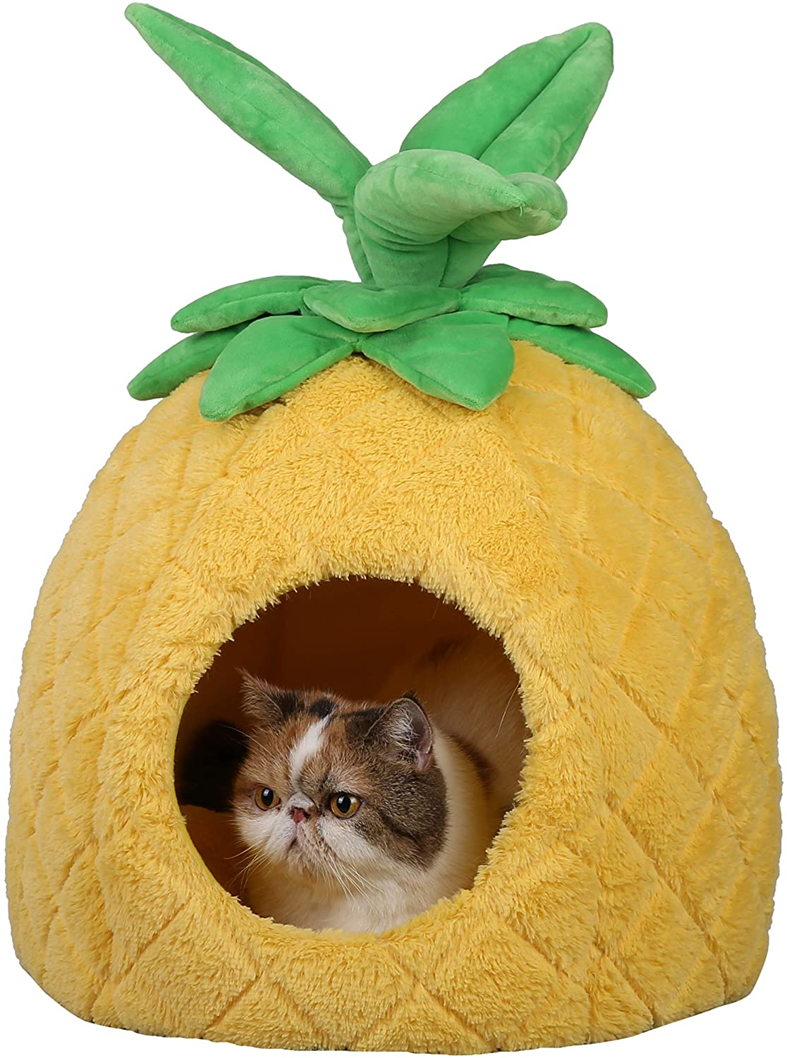 PetnPurr Pineapple Pet Excellent Bed for Cats Sup and Mesa Mall Dogs Small Puppy in