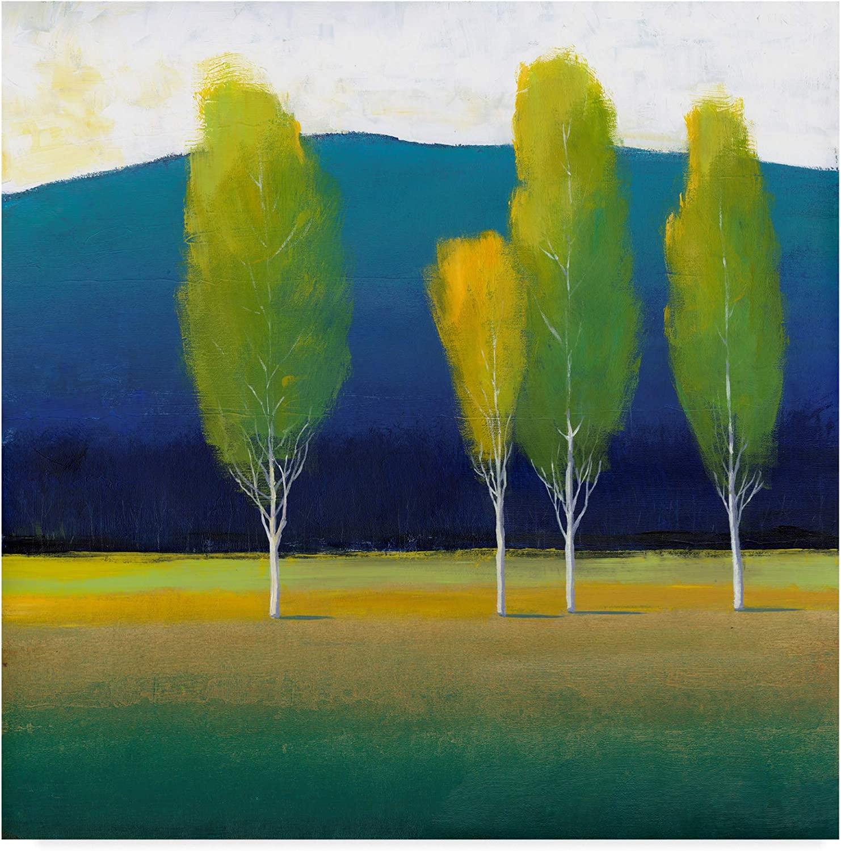 Trademark Fine Art WAG00268-C1414GG Glowing Trees I by Tim Otoole, 14x14-Inch, 14x14, Multicolor