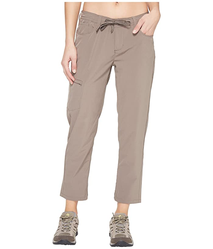 Toad&Co Jetlite Crop Pants (Falcon Brown) Women