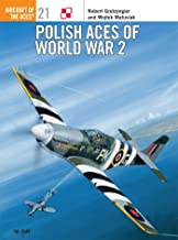 الأعمال البولندية للحرب العالمية 2 (طائرة مسلسل Aces No 21)