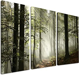 Designart Light in Dense Fall Forest with Fog-Landscape Canvas Art Print-36x28in-Multipanel 3 Piece, 36x28-3 Panels, Green
