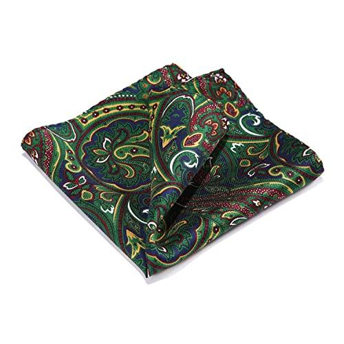 3a1bb3979472f HISDERN Paisley Floral 100% Natural Silk Printed Pocket Square Mens Fashion Classic  Handkerchief