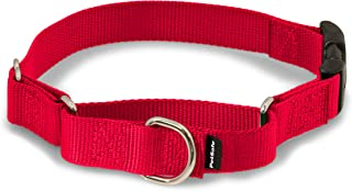 """PetSafe Martingale Collar with Quick Snap Buckle, 1"""" Large, Red"""