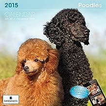 Little Gifts Poodle 2015 Calendar (8119)