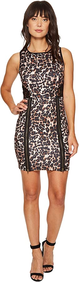 Animal Print with Lace Back Dress