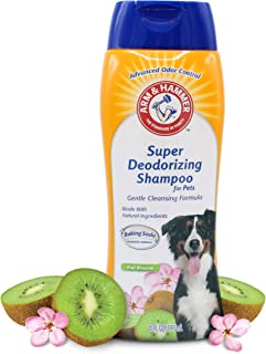 Best arm and hammer dog shampoo Reviews