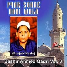 Allah Allah Mere Nabi Di (Feat. Abdul Sattar Niazi)