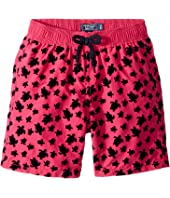 Vilebrequin Kids - Micro Turtles Flocked Swim Trunk (Big Kids)