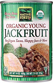 Native Forest Organic Vegan Meat Substitute, Young Jackfruit, 14 Ounce (Pack of 24)