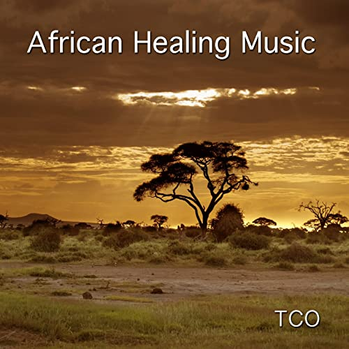 Meditation in a Forest (15 Minutes of Soothing African Music for