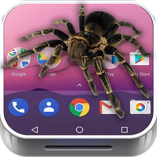 Araña en el Movil broma