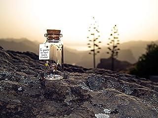 Te quiero de aquí hasta Plutón. Mensaje en una botella. Miniaturas. Regalo personalizado. Divertida postal motivación.