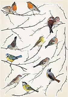 Brewster Komar LV19005 Peel & Stick Birds European Wall Decals