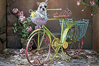 Cozonte Art - 5D DIY Full Drills Diamond Painting Kits by Number, Bicycle - pet Dog, Counted Cross Stitch Kit Rhinestone Embroidery Arts for Home Wall Decor (Square Diamond 34x49cm)