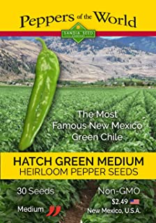 Hatch Green Chile - 30 Seeds from New Mexico - Medium Hot