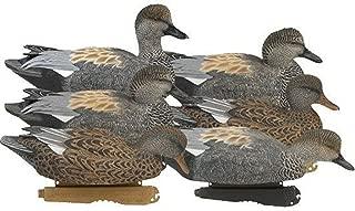 Avery Greenhead Gear Pro-Grade Duck Decoy,Gadwall,1/2 Dozen