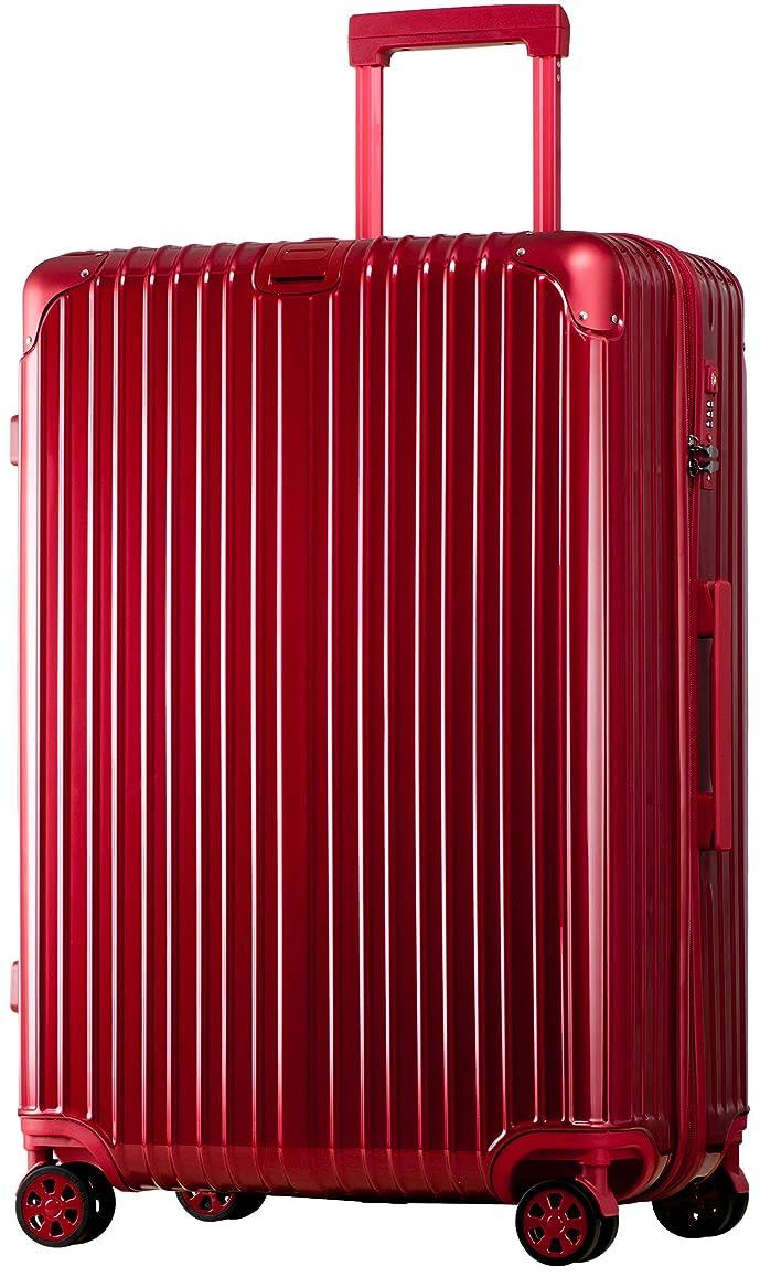 ナンセンスグラム火薬スーツケース ファスナー 大型 軽量 超消音 ダブルキャスター 8輪 TSA キャリーケース キャリーバッグ