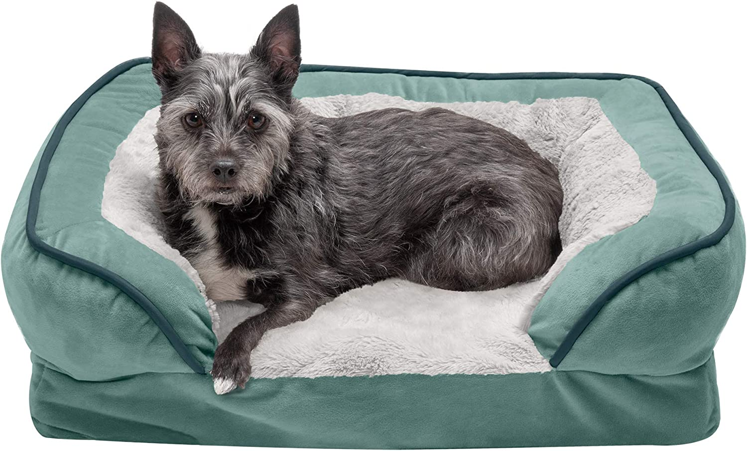 Brownstone Orthopedic Plush Velvet Waves Perfect Comfort Traditional Sofa-Style Living Room Couch Pet Bed with Removable Cover for Dogs and Cats Furhaven Pet Dog Bed Small