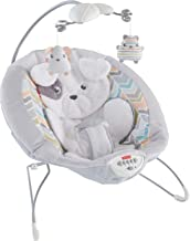 vibrating bouncer for newborn