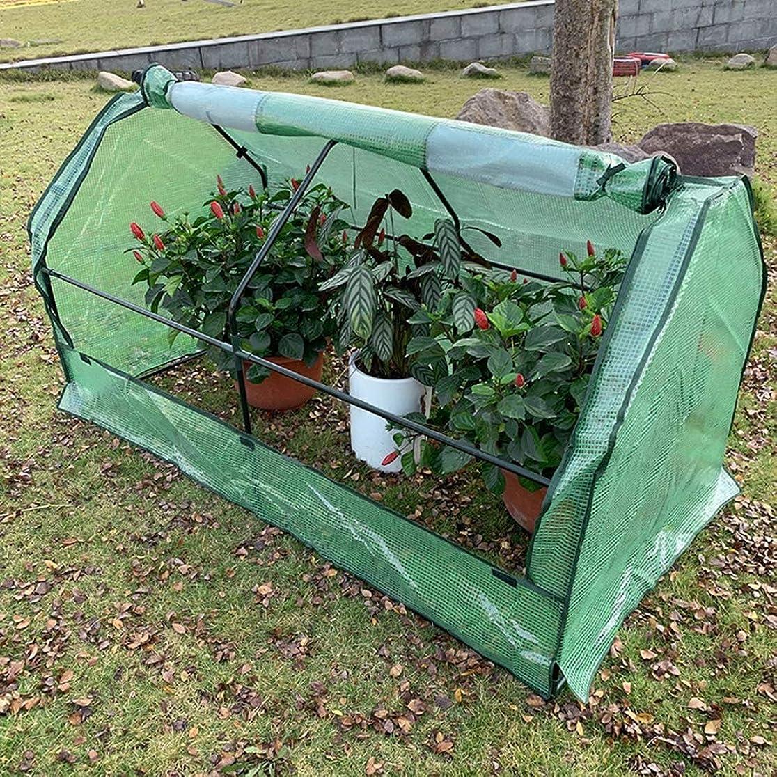 基本的なホバー取るに足らないガーデン温室冬バルコニーフラワーシェッドプロテクション植物の貯蔵大容量の小さな暖かい部屋PE防雨防雪 、2色、2サイズ Baiying (Color : Green, Size : 180X91X95CM)