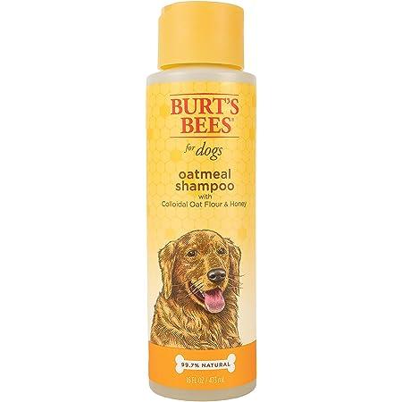 Burt's Bees for Dogs Natural Oatmeal Shampoo for Dogs, Colloidal Oat Flour & Honey - Oatmeal Dog Shampoo - Dog Grooming Supplies, Dog Bathing Supplies, Burts Bees Dog Shampoo, Dog Wash, Pet Shampoo