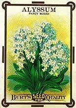 Alyssum - Vintage Seed Packet (12x18 Fine Art Print, Home Wall Decor Artwork Poster)