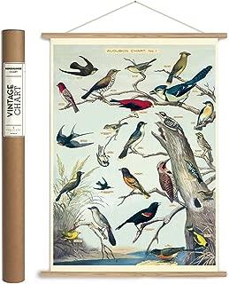 Best vintage bird poster Reviews