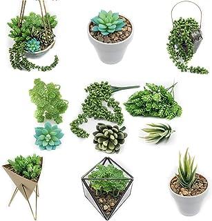6 x konstgjorda plastfalska suckulenter växter blommor Sempervivum falskt set om 6 av Digicharge