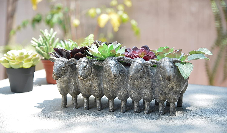 Newman New mail order House Studio Planter Rare Sheep Polyresin disdressed Succulent