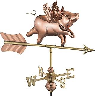 Best flying pig garden sculpture Reviews